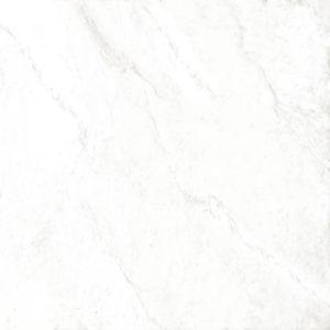 estima-polaris-pl01